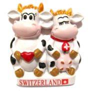 Magnet - Aimant suisse