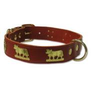 Collier de chien - Appenzellois rouge