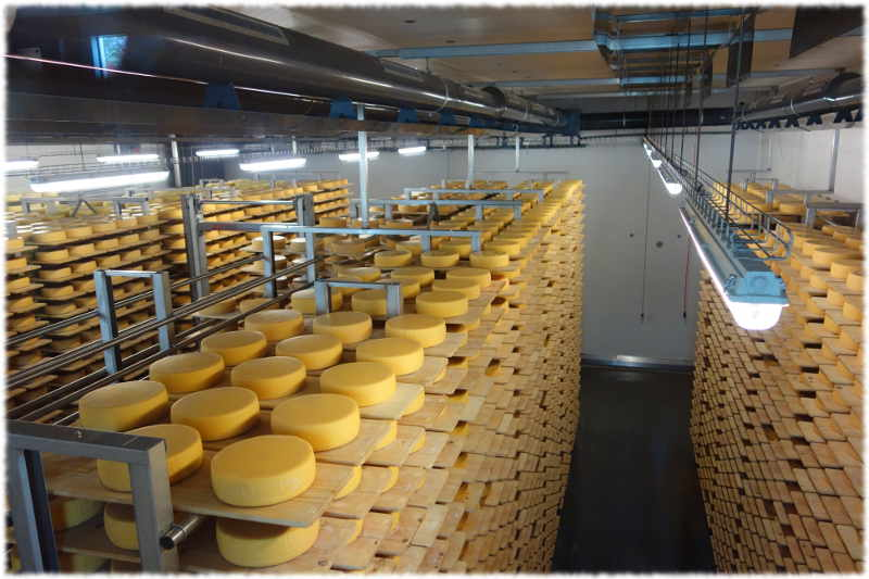 Fromage Appenzeller