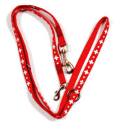 Laisse de chien croix suisse