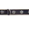 Collier de chien avec edelweiss