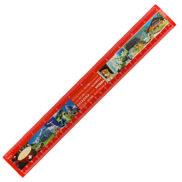 Régle suisse souvenir avec vue 30cm